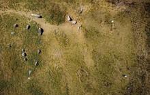 10 tàu ma chở hài cốt ngàn năm bất ngờ xuất hiện trên đảo