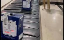 Nhân viên văn phòng Bộ gửi hàng trong thùng rượu Macallan giả danh Bộ trưởng GTVT