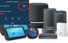 Thiết bị của Amazon cho phép nhà hàng xóm dùng 'ké' mạng Internet
