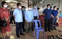 Bộ trưởng Lê Minh Hoan thị sát vùng trồng khoai lang tím ở Vĩnh Long