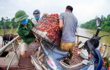 Cận cảnh nông dân chở vải thót tim đi qua cây cầu có con dốc dựng đứng