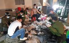 Giấu hàng trăm kg ma tuý trong dạ dày lợn, môtơ điện để chuyển ra nước ngoài