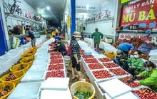 Trung Quốc nhập hơn 2,5 triệu tấn trái cây Việt Nam