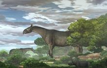 Kinh hãi tê giác quái thú 26,5 triệu tuổi giống khủng long, gấp 4 lần voi