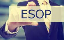 Thưởng đậm bằng cổ phiếu ESOP: Ai hưởng lợi nhất?