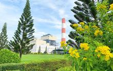 Công ty Nhiệt điện Cần Thơ hưởng ứng Ngày Môi trường thế giới và Tháng Hành động vì môi trường