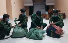 CLIP: Biên phòng An Giang mật phục phát hiện vụ vận chuyển 33kg cần sa khô, 7kg ma túy