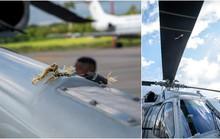 Trực thăng chở tổng thống và các bộ trưởng hàng đầu của chính phủ Colombia bị bắn