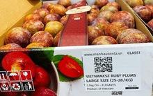 Mận Ruby Sơn La 230.000 đồng một kg