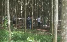 Hoảng hốt thấy 1 người nằm chết trong lô cao su ở TP Long Khánh, Đồng Nai