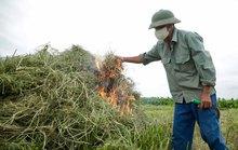 Quy trách nhiệm người đứng đầu nếu để xảy ra vi phạm gây ô nhiễm môi trường