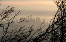 Nồng độ CO2 cao kỷ lục trong 4 triệu năm, trái đất ngộ độc nặng