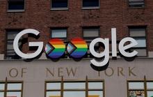 Google nhận án phạt nặng tại Pháp
