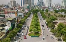 CLIP: Con đường đẹp nhất Hà Nội bị quây tôn, di dời hàng cây để mở rộng