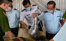 Hải quan Đà Nẵng bắt 3,2 tấn hàng nghi sừng tê giác, xương động vật hoang dã từ Nam Phi