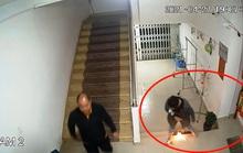 Vụ thanh tra viên quậy tưng chung cư: Lãnh đạo Thanh tra Lâm Đồng chỉ đạo làm rõ