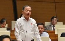 Đại biểu Quốc hội Lê Thanh Vân đề cập tới vụ bánh mì không phải thực phẩm thiết yếu