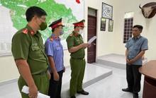 Trạm trưởng kiểm lâm nhận 35 triệu đồng để cho lâm tặc phá rừng