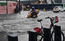 """Mưa bão tràn vào, London cảnh báo """"xe hơi không phải tàu ngầm"""""""