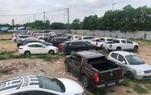 Tạm giữ 81 ôtô liên quan nhóm cầm cố xe gian
