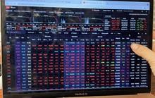 Chứng khoán ngày 6-7: VN-Index mất 56 điểm, nhà đầu tư hoang mang vào cuối phiên