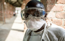 WHO cảnh báo thêm một loại virus lây từ dơi sang người, đã có ca tử vong
