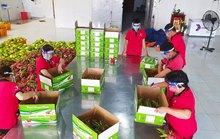 Bước tiến dài của trái cây xuất khẩu