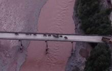 Trung Quốc: Vượt 1.300 km, đàn voi bất trị sắp về đến nhà
