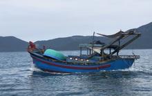 Giã cào khuấy nát vịnh Vân Phong