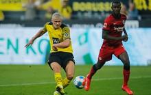 Erling Haaland thách thức hùm xám Bayern Munich