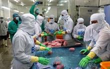 Chuyển thị trường xuất khẩu thanh long, cá ngừ