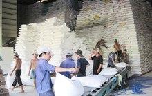 Hà Nội gửi tặng TP HCM 5.000 tấn gạo, Bình Dương 1.000 tấn gạo