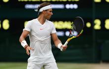 Nadal rút tên khỏi US Open 2021, nghỉ thi đấu hết năm 2021