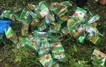Hai đối tượng thủ súng ngắn, vận chuyển 46 kg ma túy đá từ Lào sang Việt Nam