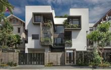Gia đình Hải Phòng chi triệu USD để xây căn nhà xanh