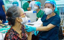 Hướng dẫn tra cứu dữ liệu tiêm vắc-xin Covid-19 tại Bệnh viện Bạch Mai