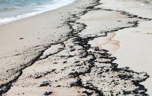 Gần 5km bờ biển Quảng Bình xuất hiện vết dầu lạ: Sở TN-MT sau kiểm tra, nói gì?