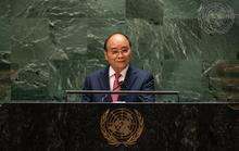 Chủ tịch nước: Tạo điều kiện các nước đang phát triển tham gia chuỗi cung ứng vắc-xin