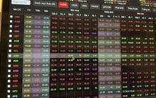 Nhiều cổ phiếu họ Louis giảm kịch sàn sau cảnh báo của Ủy ban Chứng khoán