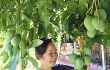 Khu vườn toàn rau trái Việt trên đất Mỹ