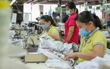Phục hồi thị trường lao động sau dịch