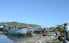 """""""Khai tử"""" tàu giã cào để giữ sinh thái biển"""