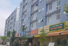 GS Đặng Hùng Võ: Nhà ở xã hội đang phát triển theo kiểu bao cấp