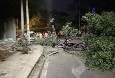 Tai nạn liên hoàn đường Nguyễn Hữu Cảnh: Chạy lạng lách, đạp nhầm chân ga