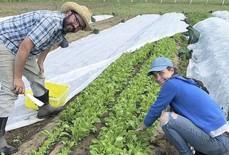 """Lớp học nông nghiệp hữu cơ ngày càng """"hot"""" ở Mỹ"""