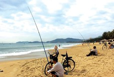 Ngày cá áp bờ, cần thủ ùn ùn đổ về bờ biển La Gi