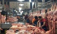 Mở cao điểm kiểm soát nguồn thịt heo vào TP HCM