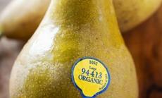 Cẩn trọng khi mua hoa quả có nhãn số 3, 4 hoặc 9