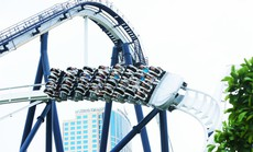 Thỏa sức tung hoành tại công viên chủ đề Dragon Park chỉ với 50.000 đồng