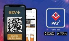 QR Code: Tương lai của công nghệ thanh toán